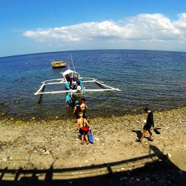Anilao Weekends 2015